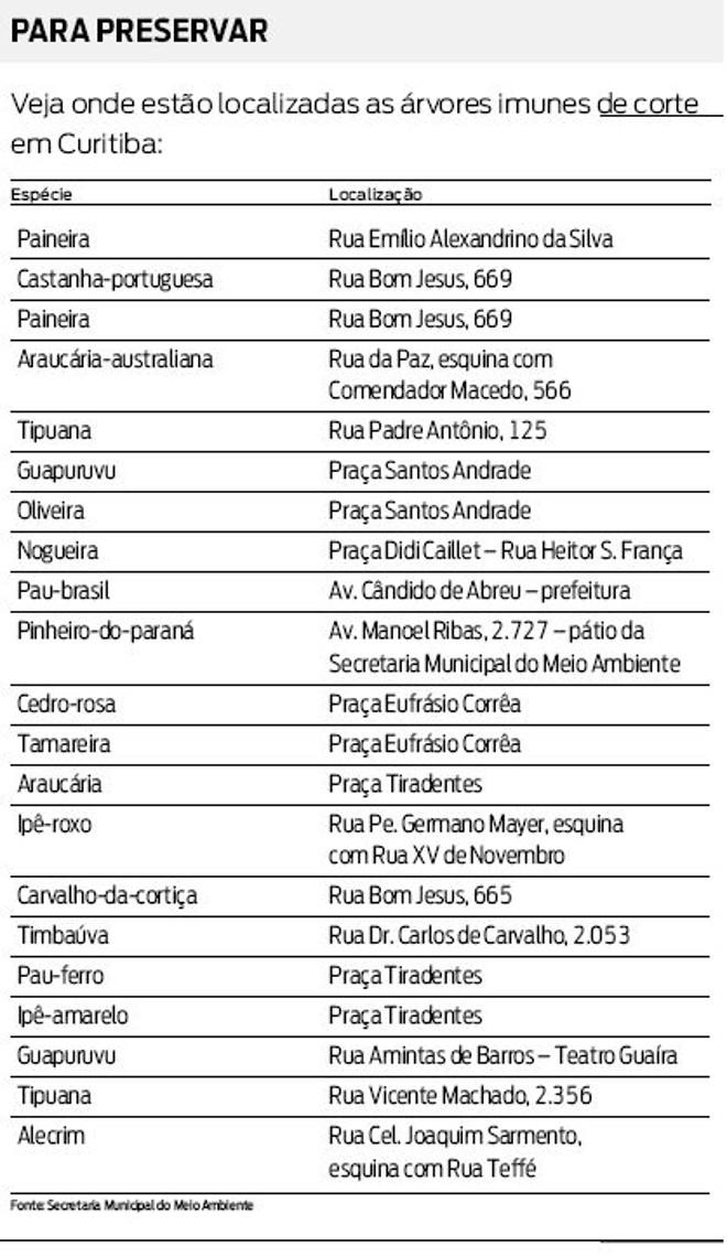 Veja onde estão localizadas as árvores imunes de corte em Curitiba |