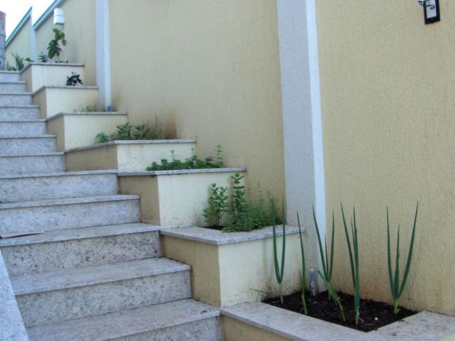 Solução inteligente: a paisagista Heloíza Rodrigues aproveitou o espaço da escada para montar uma horta   Heloíza Rodrigues/Divulgação