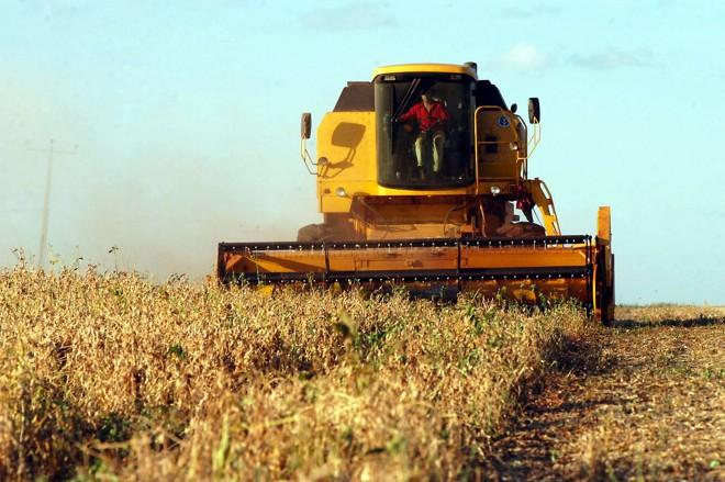 Com 20% da colheita já realizada, a soja é um dos destaques da produção paranaense de grãos | AEN
