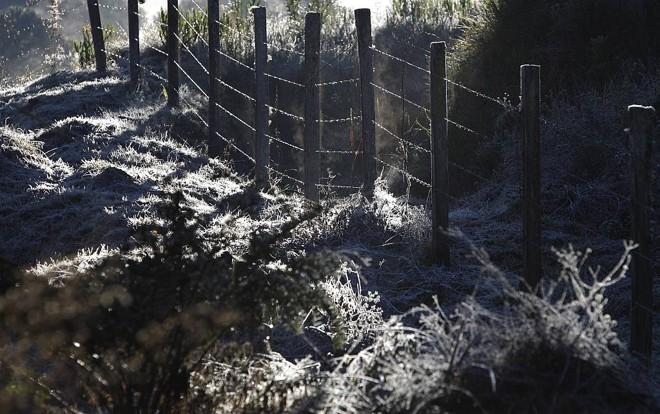 Ocorrência de geadas e nevoeiros, como este caso em São José dos Pinhais, devem ser situações comuns para este inverno | Jonathan Campos / Agência de Notícias Gazeta do Povo