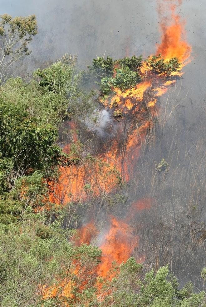 Fogo em Campina Grande do Sul: tempo seco contribui para as queimadas | Valterci Santos/Gazeta do Povo