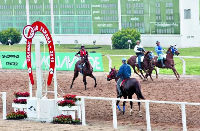 Cavalos treinam nas raias do Jockey Club às vésperas do Grande Prêmio Paraná, agora em versão 2.000 metros | Aniele Nascimento/ Gazeta do Povo