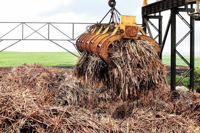 Usina de açúcar e álcool em Engenheiro Beltrão: para governo, setor sucroalcooleiro não foi capaz de segurar alta dos preços | Dirceu Portugal/ Gazeta do Povo
