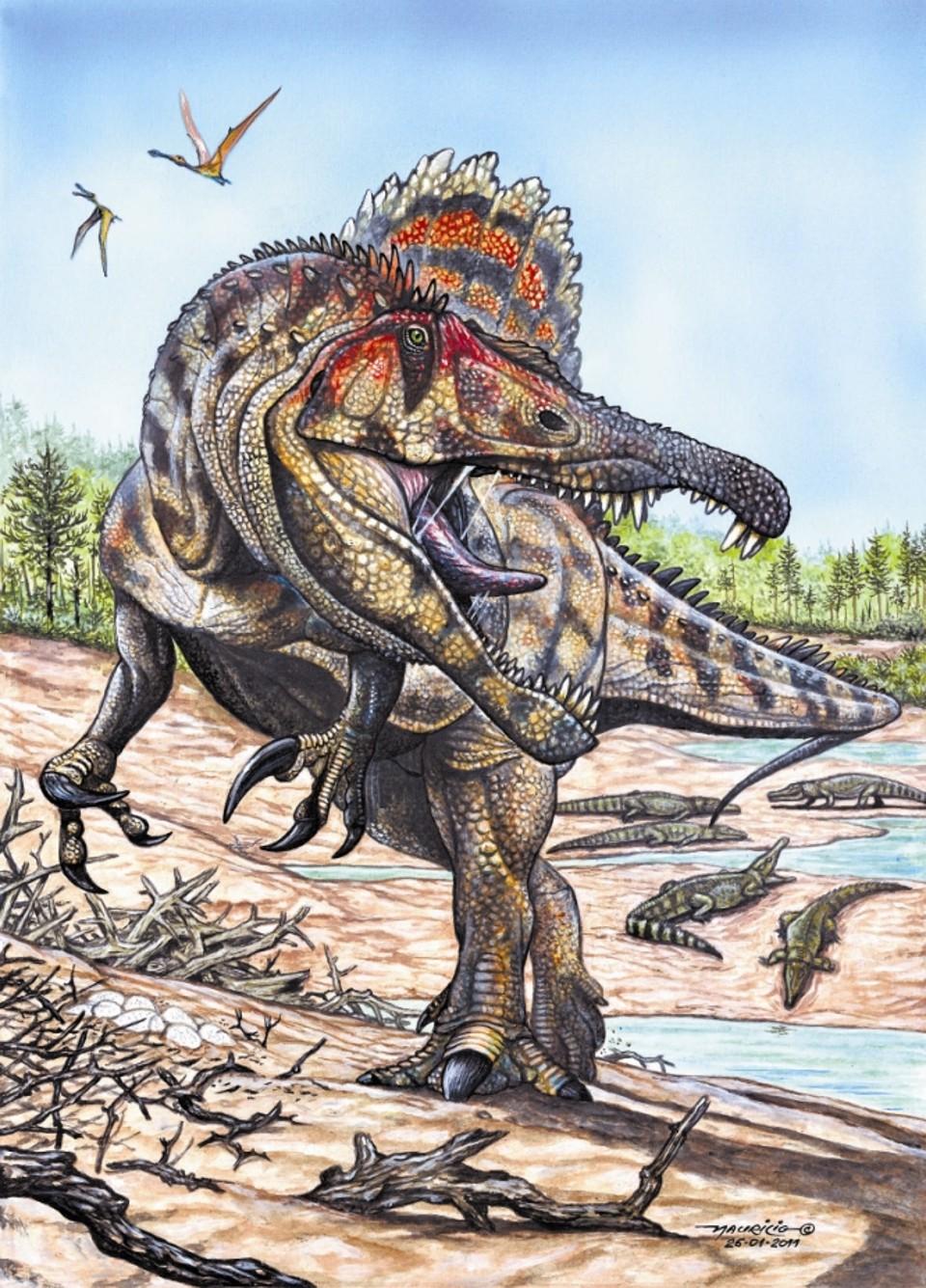 Maior dinossauro carnívoro do Brasil viveu no Maranhão