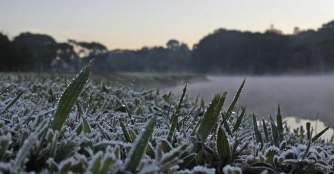 Geada é registrada nos municípios mais frios durante o inverno | Jonathan Campos / Agência de Notícias Gazeta do Povo