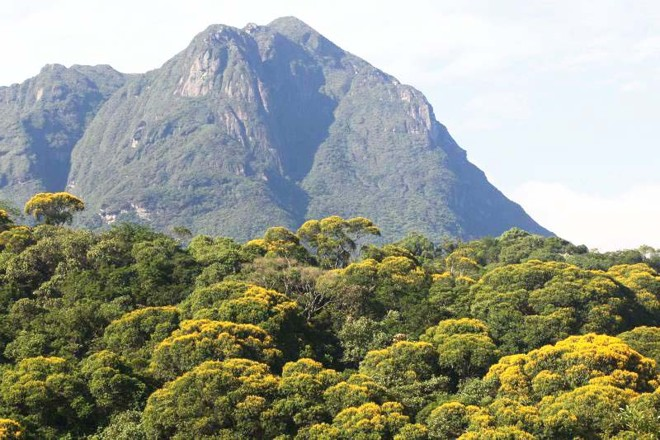 Marumbi: conjunto reúne nove montanhas |
