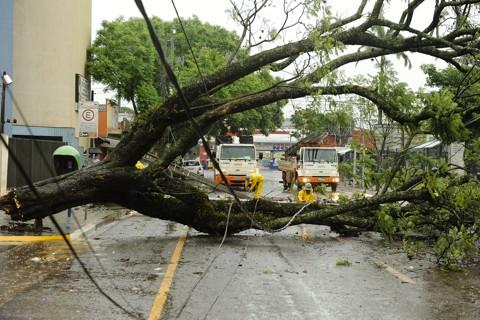 No final de 2010, chuva e ventos fortes derrubaram árvores e postes em Maringá | Fábio Dias