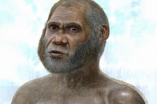 É a primeira vez que os restos de uma nova espécie que viveu em um período tão próximo ao atual são encontrados no leste da Ásia | EFE