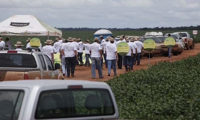 Atividade de integração da Ceagro Los Grobo em Mato Grosso. Empresa está apenas chegando ao Centro-Oeste. |