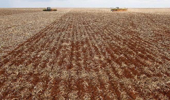 Variação climática afetou trabalhos de plantio e colheita durante a safra 2012/13   Hugo Harada/gazeta Do Povo