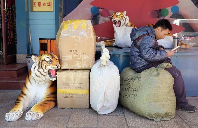 Vendedor em um mercado público de Beijing: observadores esperam que a iniciativa privada ganhe espaço na economia chinesa, ampliando a demanda | Jason Lee/Reuters