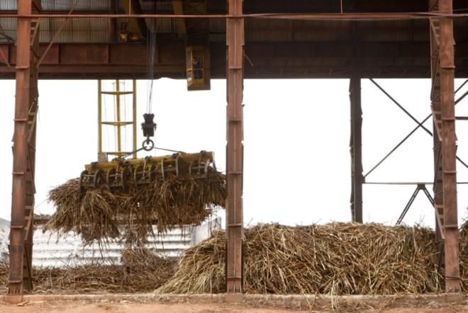 Falta de chuvas entre o final de 2013 e início de 2014 comprometeu a disponibilidade de cana-de-açúcar para a indústria este ano. Volume processado deve ser 16 milhões de toneladas inferior ao do ano passado, mesmo com área disponível ampliada | Hugo Harada/ Gazeta Do Povo