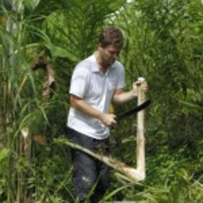 Vitor Paolineti produz pupunha na sua propriedade de 14 hectares em Morretes, no litoral. | Jonathan Campos
