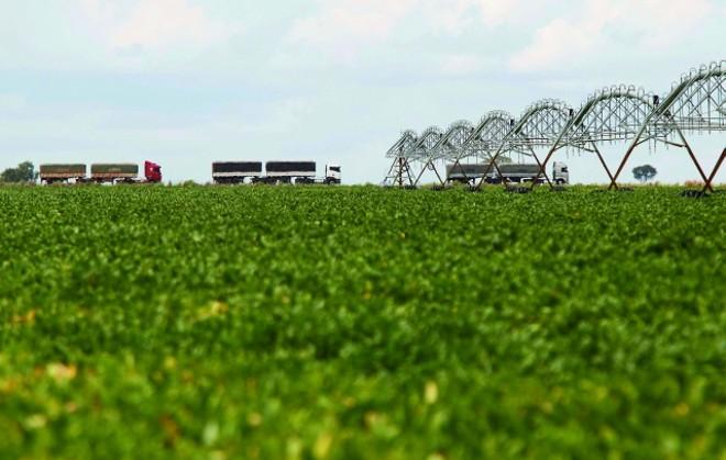 Área de soja irrigada em Barreiras, no Oeste da Bahia. Terras extensas, planas e mais baratas atraem agricultores do Sul |