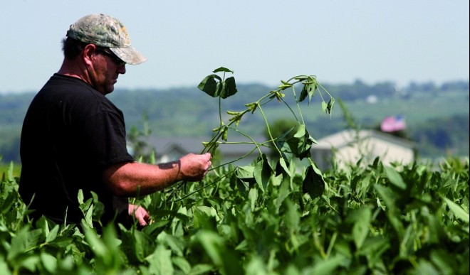 O produtor Matt McGinnis, em Indianola (EUA). Salto na produção norte-americana impõe desafio à agricultura brasileira | Jonathan Campos/gazeta Doa€‰povo