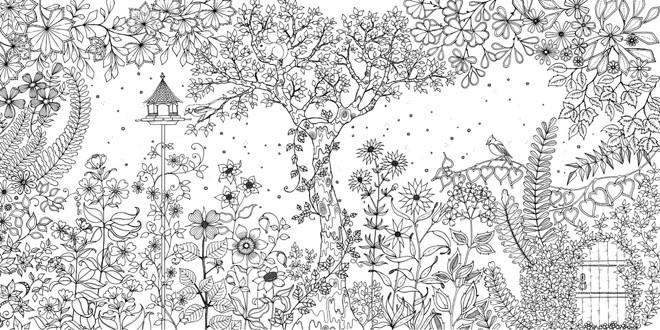 Livros De Desenhos Para Colorir Viram Febre E Relaxam