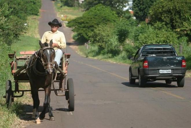 Estimativa é que 120 famílias dependam hoje dos animais para o transporte. | Dirceu Portugal/Arquivo/Gazeta do Povo