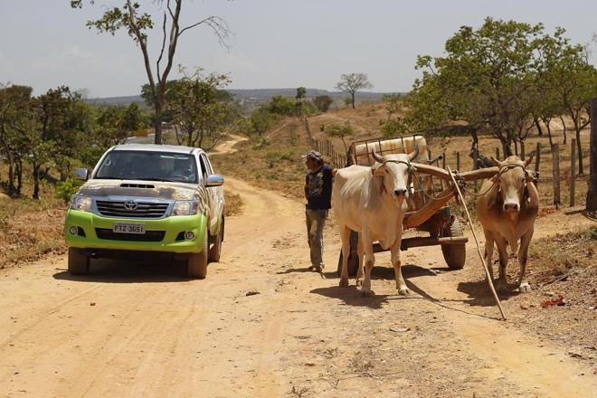 Equipe percorreu 3 mil quilômetros na última semana para chegar à região de clima semiárido em que o bioma predominante é a caatinga. | Jonathan Campos/Gazeta do Povo