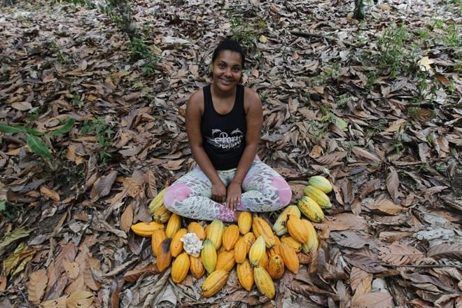 A agricultora familiar Ailana Santos dos Reis cercada por frutos em dia de colheita. Produção baiana representa 70% da safra nacional. | Jonathan Campos/Gazeta do Povo