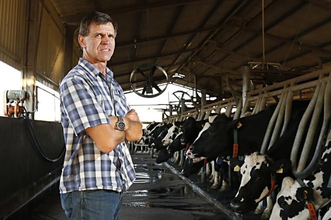 13º no ranking Milkpoint, Albertus Frederik Woltersx é  o segundo maior produtor de leite da região de Castro.   Josué Teixeira / Gazeta do Povo