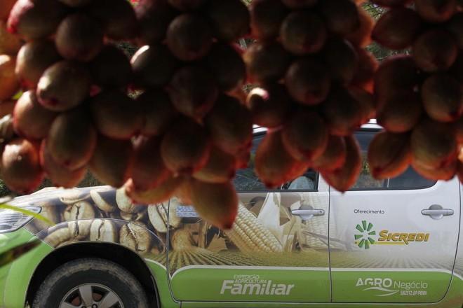Roteiro segue nesta semana pelo Paraná antes de avançar por Mato Grosso do Sul. | Jonathan Campos/Gazeta do Povo