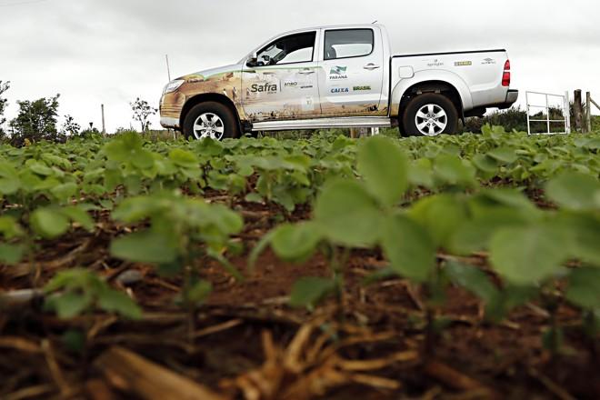 Projeto está em sua décima edição e abre novas formas de relacionamento no agronegócio.   Albari Rosa/Gazeta do Povo