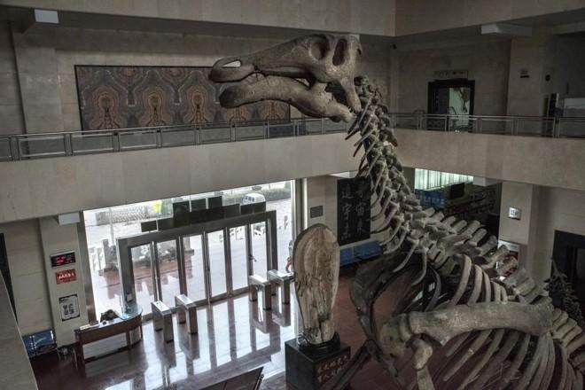 Esqueleto de dinossauro na entrada do Museu Natural de Tianyu, na China | GILLES SABRIE/NYT