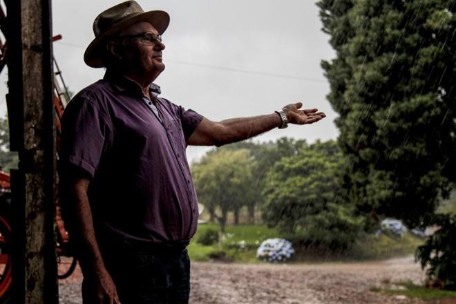 José Nicolau Ludwig estende a mão para sentir a chuva em Abelardo Luz. Clima úmido prevaleceu durante todo o mês de novembro. | André Rodrigues/Gazeta do Povo