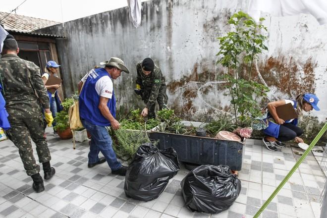 Agentes e soldados das Forças Armadas em inspeção a uma residência em Paranaguá, no Litoral do Paraná. Uso de larvicida é recomendado apenas em locais  de difícil limpeza, como tanques e piscinas abandonadas. | Jonathan Campos/Gazeta do Povo