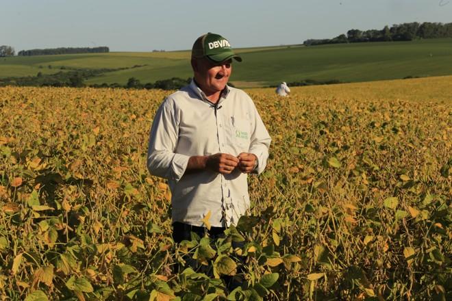 Mesmo nas áreas de pivô o desempenho da safra é inferior ao do ano passado, diz o produtor de sementes Mauro César Stertz. | Fotos: Pedro Serápio/Gazeta do Povo