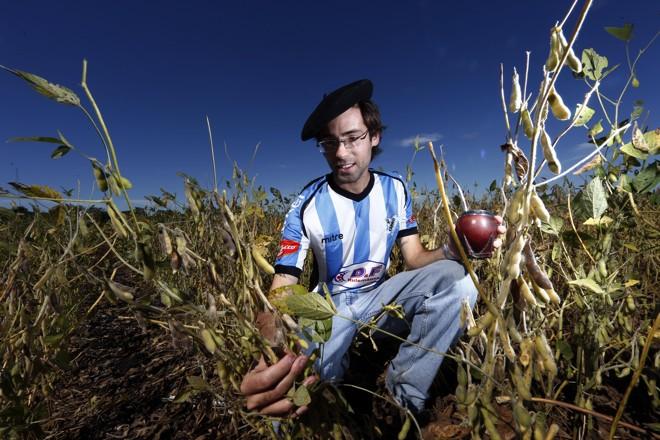 Falta de chuvas em janeiro afetou potencial da soja de verão no Uruguai, diz Andrés Feuer, que administra mais de mil hectares na região de Nuevo Berlín. | Albari Rosa/Gazeta do Povo