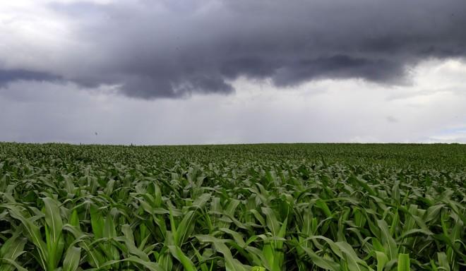 Previsão mostra a ocorrência de chuvas acima da média em praticamente todo o Estado | Pedro Serapio/Gazeta do Povo