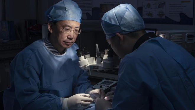 Ren Xiaoping da Universidade de Medicina de Harbin: cirurgião ortopedista  lidera pesquisa para transplante de corpo.   GILLES SABRIE/NYT