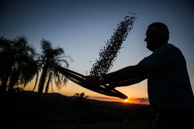 Pela nova norma, 35% de todo o saldo proveniente de LCAs emitidas a partir de 1º de junho deste ano será destinado a operações de crédito rural. | BRUNNO COVELLO/Gazeta do Povo