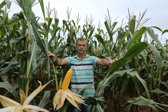 Carlos Pereira Alves, agricultor em Tupãssi, teve aumento de produtividade em 35% com a agricultura de precisão | /
