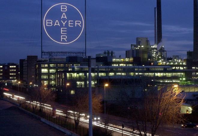 Bayer: companhia está entre as 40 Melhores Empresas para Começar a Carreira, segundo a revista Você S/A. | ROLAND SCHEIDEMANN/AFP