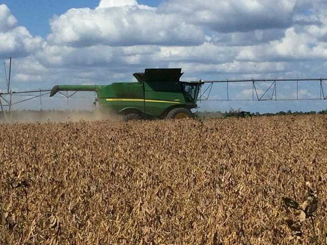 Agricultor é do estado da Geórgia, nos Estados Unidos, um dos polos produtores de grãos no país. | Reprodução/Internet