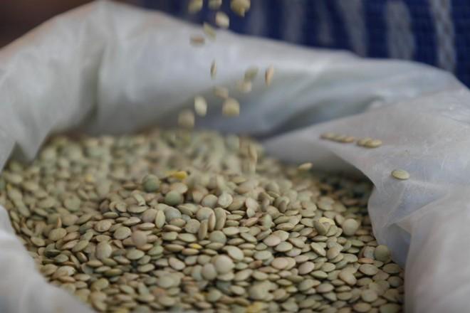75a4c37c2 Indiana UPL investirá R  1 bi em fábrica de agroquímicos no Brasil ...