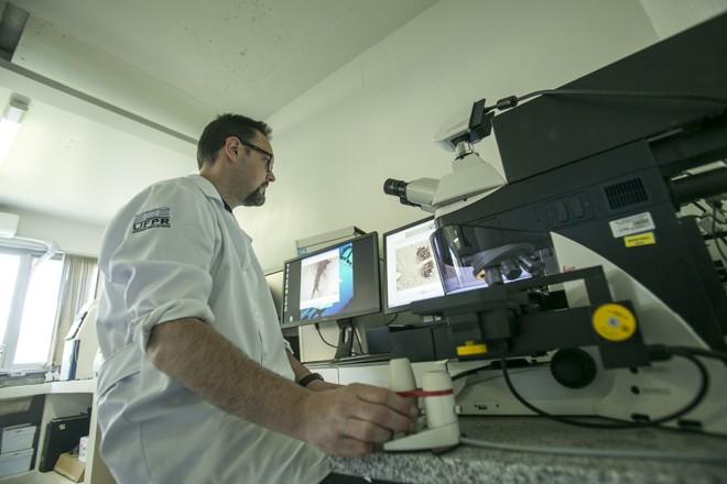 Pesquisador Marcelo Lima: ativação do núcleo oculomotor pode indicar fase inicial da doença. | Marcelo Andrade/Gazeta do Povo