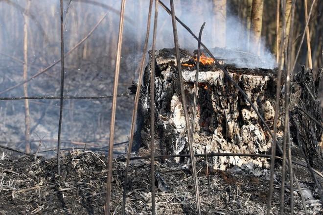 Autoridades peruanas alertam que o fogo pode atingir um parque nacional de preservação; 5 mil pessoas estão em  risco. | Henry Milléo / Agência de Notícias Gazeta do Povo