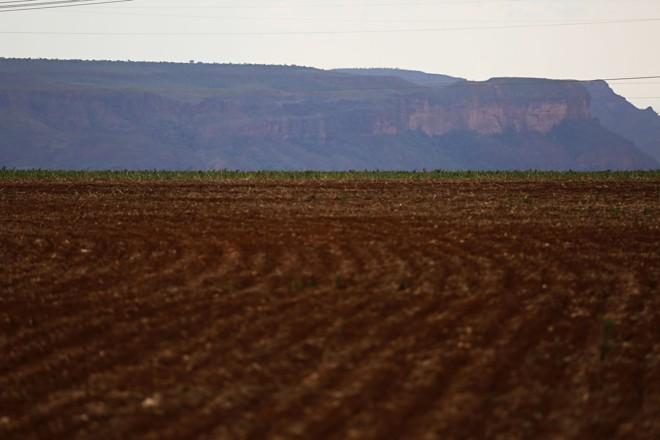 Esta foi a última região produtora do Mato Grosso visitada pelo projeto na fase de plantio. | Felipe Rosa/TRIBUNA DO PARANA