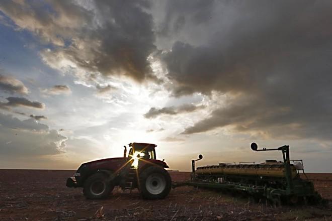 Embalados pelo La Niña, que provoca chuvas acima da média nas regiões Norte e Nordeste do país, os produtores estão empolgados.   Albari Rosa/Gazeta do Povo