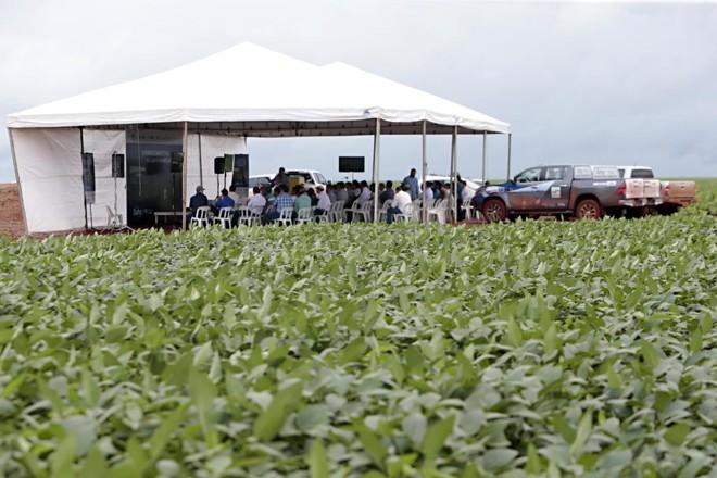 Lançamento foi no meio de uma plantação de soja, em Rondonópolis, um dos principais polos produtivos do Mato Grosso. | Albari Rosa/Gazeta do Povo