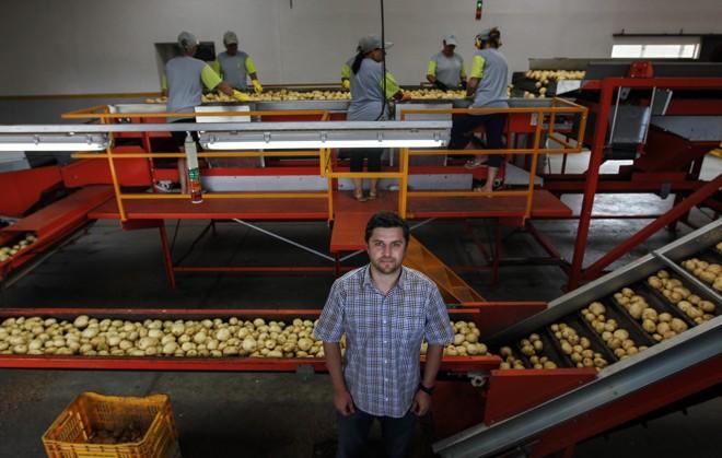 Ao todo, a Fazenda emprega 50 funcionários de forma direta, com carteira assinada.   Jonathan Campos/Gazeta do Povo