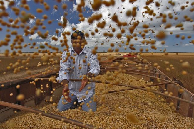 Colheita da soja: as exportações da oleaginosa caíram, mas ela continua como a líder no ranking dos produtos mais exportados em 2016.   Jonathan Campos/Gazeta do Povo