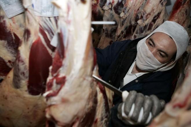 A Marfrig alega que a unidade se tornou inviável por conta da baixa oferta de gado na região. | Henry Milléo /Agência de Notícias Gazeta do Povo