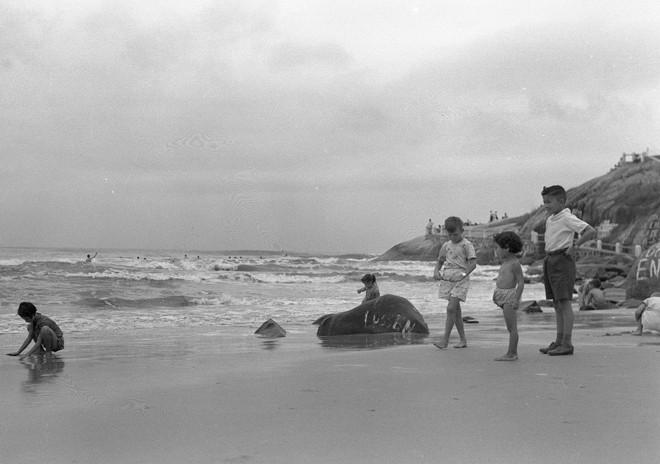 Veranistas e moradores em Matinhos da década de 1940 | Arquivo Prefeitura de Matinhos