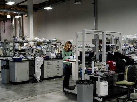 Laboratório da Lygos, empresa de Berkeley que fabrica leveduras produtoras de ácido malônico, ingrediente de perfumes geralmente derivado do cianeto | Jason Henry/NYT