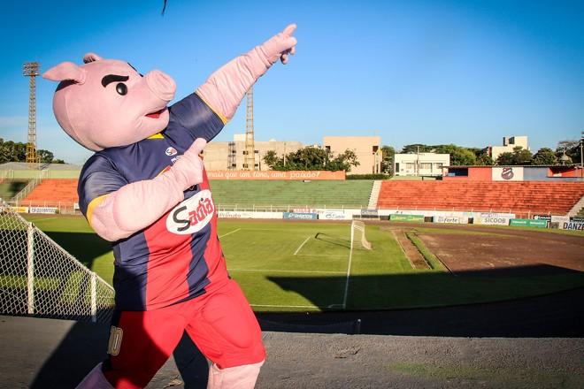 Novo mascote do clube, Teco causa curiosidade nos torcedores doToledo. | Divulgação:Toledo