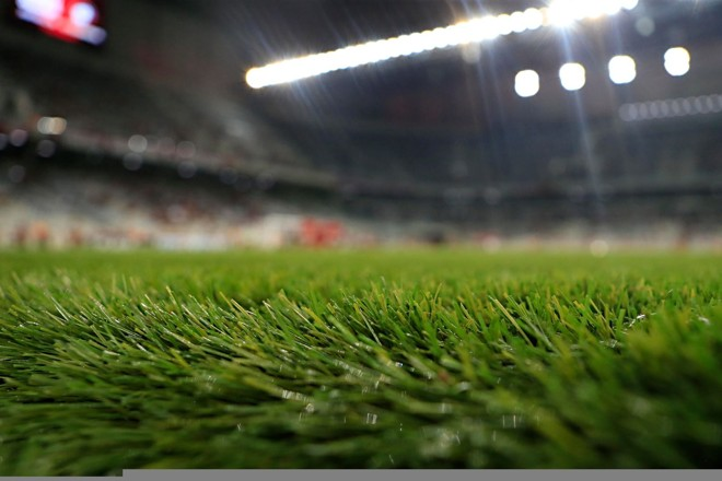 Eurico Miranda propôs acabar com a grama sintética | Albari Rosa/Gazeta do Povo